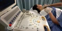 Thyroid And Parathyroid Glands Ultrasound