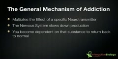 Addiction of Drugs Mechanism