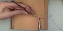 Suturing - The Vertical Mattress