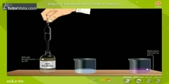How Temperature Affects the Rate of Reaction