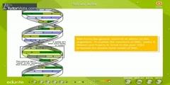 Bio molecules in Living Organisms