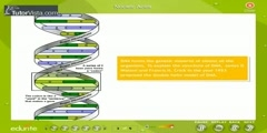 Living Organisms And Bio Molecules