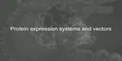 Protein Expression and Proteomics