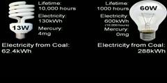 CFL Bulbs vs Incandescent Light Bulb Efficiency
