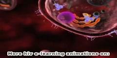 HIV drug groups - Protease inhibitors