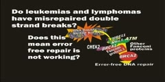 The BRCA1/2 pathway prevents leukemias and lymphomas