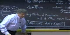 Genetics lecture about biological functions