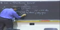 Recombinant DNA Lecture 1