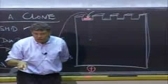 Recombinant DNA Lecture 3