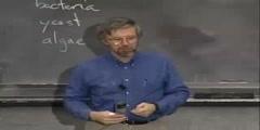 Lecture: Biochemistry I