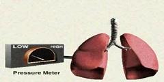 Mechanics of Breathing in Animation