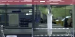 How to Extract Plasmid DNA (invitrogen)