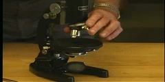 Physics Lab Demo 15: Microscope