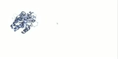 Tutorial: Overview of KEGG Bioinformatics Website