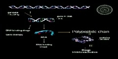 Bioinformatics for better tomorrow, IIT-Delhi