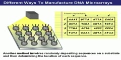 What is biotechnology patent DNA microarrays