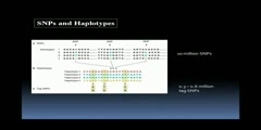 Microarray based SNP Genotyping