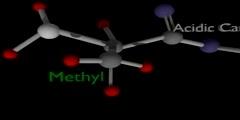 Different types of amino acids