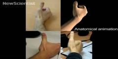 How does a virtual hand get under the skin?