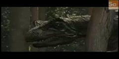 Dinos- Allosaurus vs. Stegosaurus