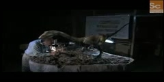 Mammals Vs Dinos - Coelophysis Domination