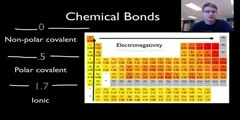 Comparison of covalent and Ionic bonds