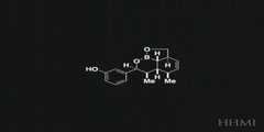 Small Molecules and Their Diversity