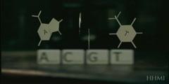 DNA components