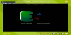 Action of Enzymes - Lock And Key Theory