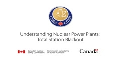 Total Station Blackout in Nuclear Power Plants