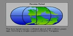 The continental drift