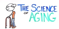 Is aging a disease? Why do we age?