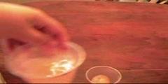 Egg Osmosis Experiment