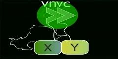 Dynamics of BIFC Complexes