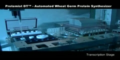 Protemist DT - Automated Wheat Germ Protein Synthesizer