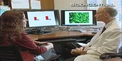 HIV-Immune Cells