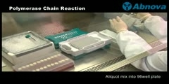 How to Formulate a Polymerase Chain Reaction