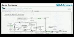 Gene pathway software
