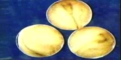 Development of egg cells