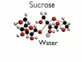 Dehydration Synthesis - Blender Animation