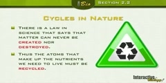 Energy cycle in nature part 2