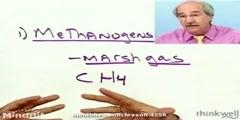 Methanogens: microbes that produce marsh gas
