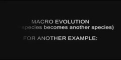 Evolution: A Theory in Dilemma - IPU Edition
