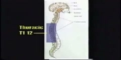Neurology disorders
