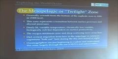 Ocean Life - Epipelagic & Mesopelagic