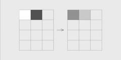 Visual DNA replication2