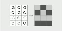 Visual DNA entropy1