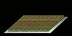 Affymetrix microarray assay