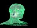 Human Brain Anatomy MRI 3D
