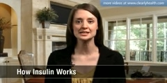 How insulin works?